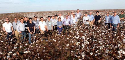 O grupo em visita ao Mato Grosso | Foto: Virgília Vieira/Ascom Abapa