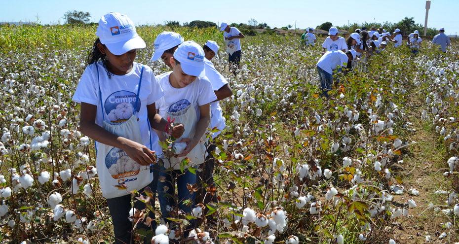 Durante a programação, os alunos vivenciaram um pouco da vida no campo   Foto: Virgília Vieira/Ascom Abapa