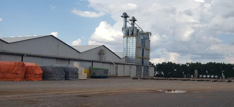 Indústrias de beneficiamento de algodão