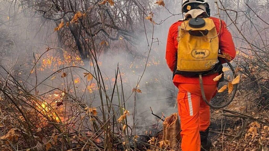 Corpo de Bombeiros divulga mudanças na operação de combate aos incêndios na Bahia